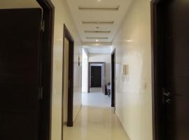 Appartement vide équipé - LV264