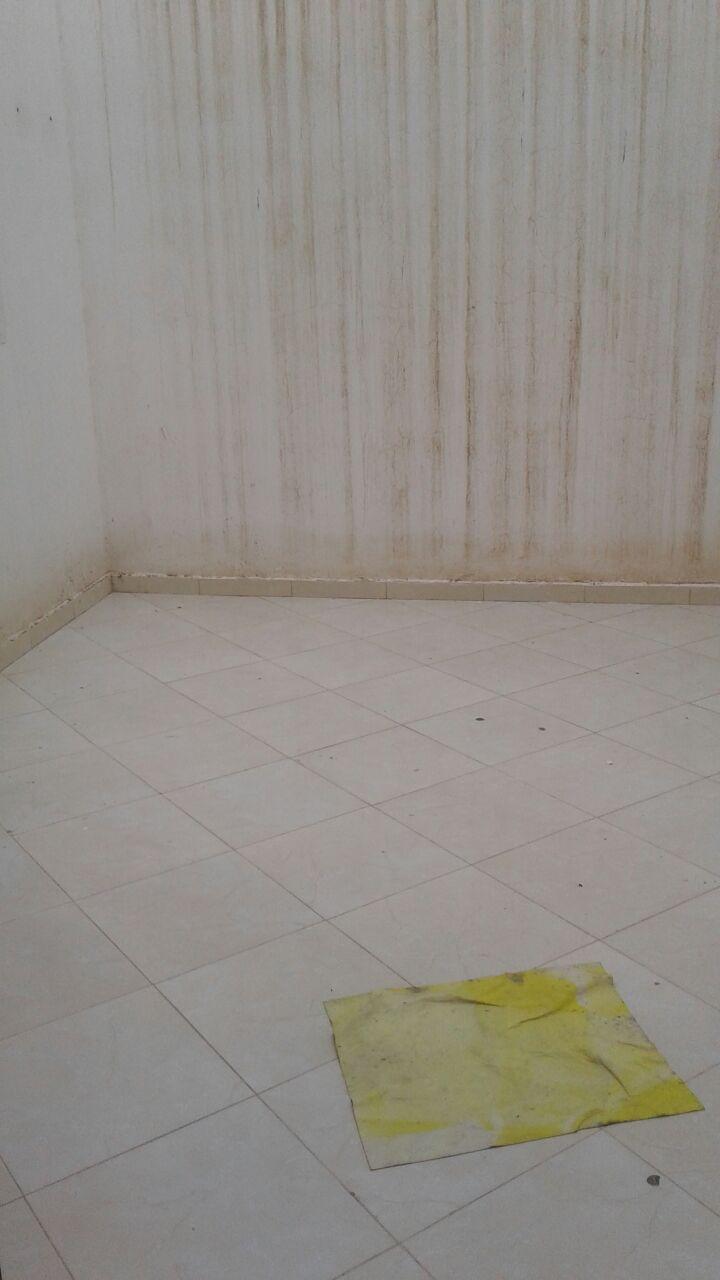 Appartement vide avec cour - LV300